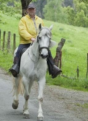 Peregrinos a caballo