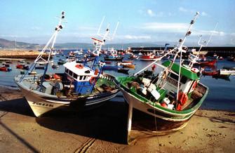 Barcos de pesca en el puerto de Fisterra
